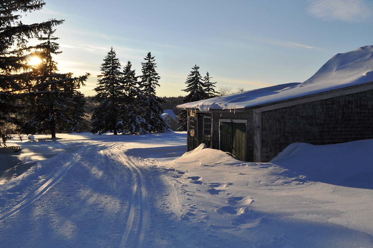 Ski trails and cabin in the sun